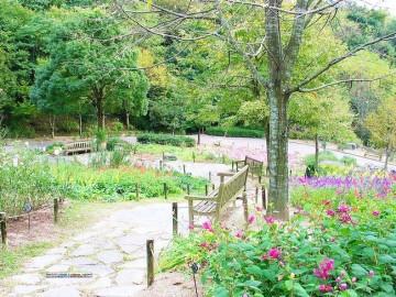日式风格别墅庭院景观设计效果图