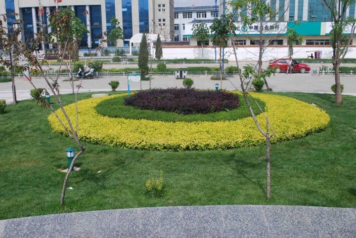 城市园林绿化广场设计效果图