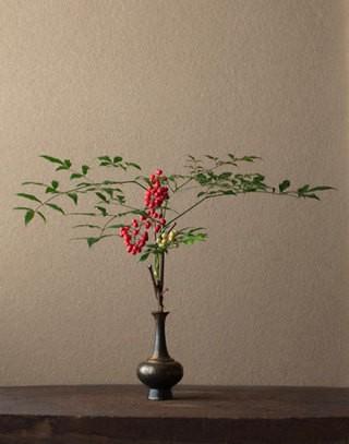 中式家具室内植物装饰选择
