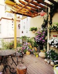 客廳盆栽風水講究大盤點 小心破換整體家裝風水