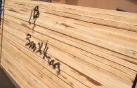 桦木板材怎么样 桦木板材价格